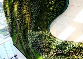 Icon-HK-Green-Vertical-Garden_2