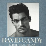Gandy-book-cover-libro