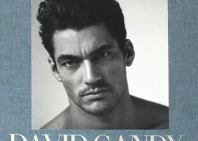 Gandy-book-cover-libro