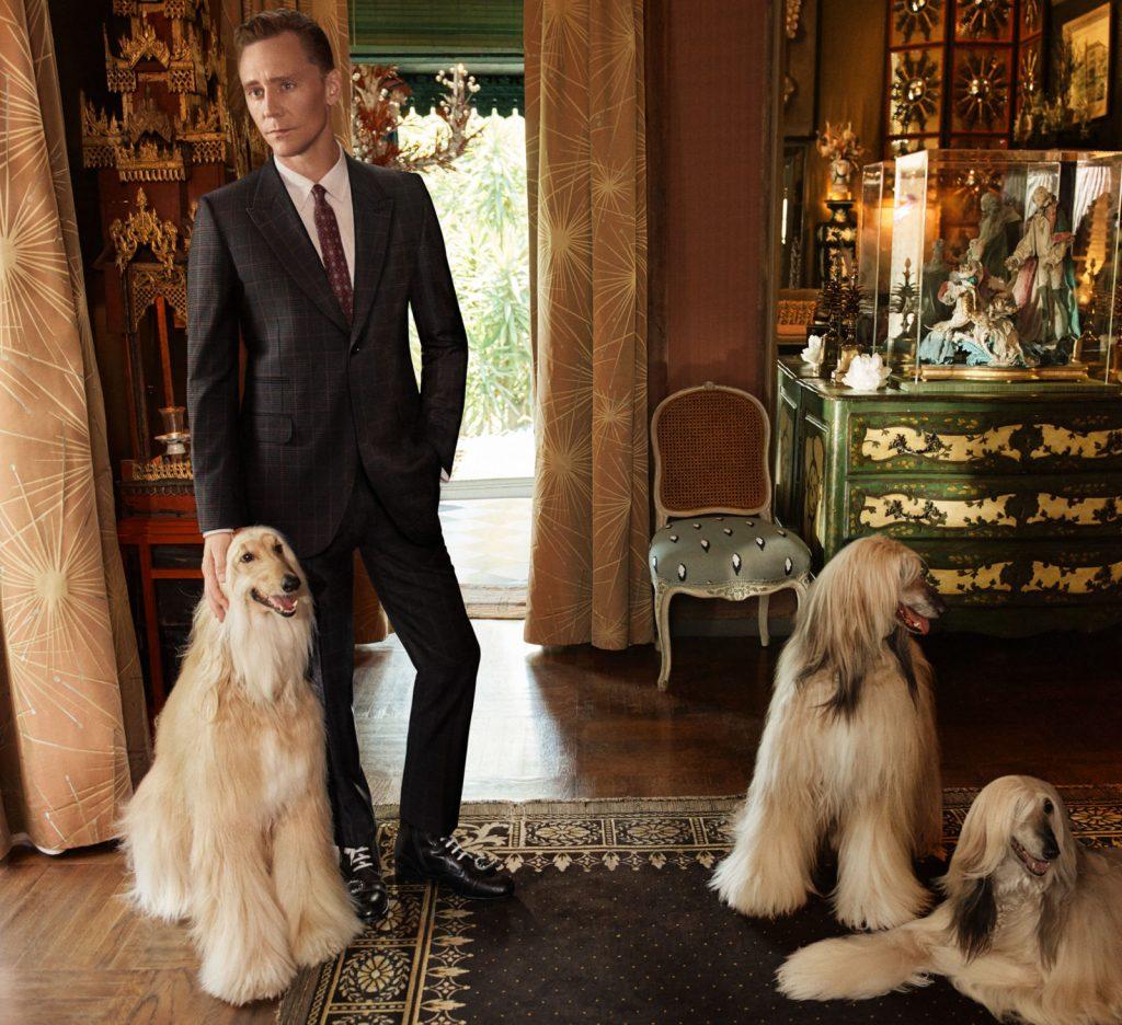 Gucci - Tom Hiddleston 3