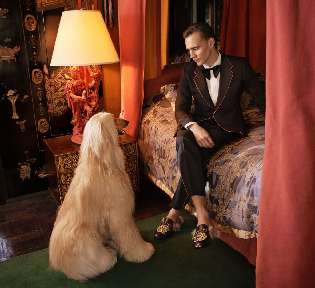 Gucci - Tom Hiddleston 4